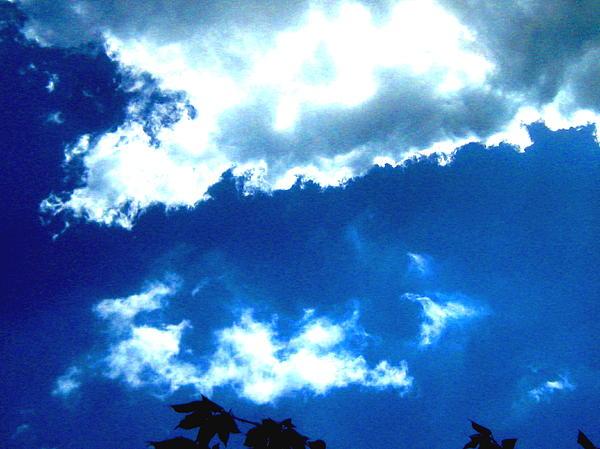 blue heaven sexdate finden