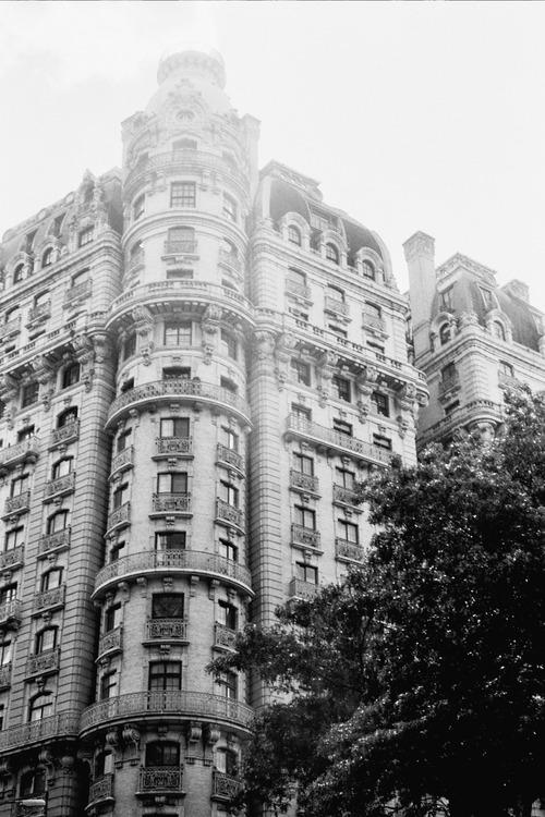 New York Minute Bronx Banter   New york minute, Bronx, New
