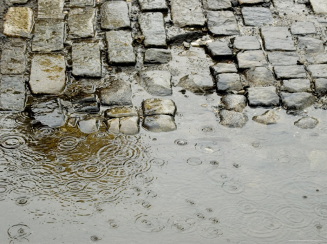 todd-gipstein-raindrops-on-a-puddle-on-a-cobblestone-road-new-york-new-york_i-G-26-2630-M34MD00Z