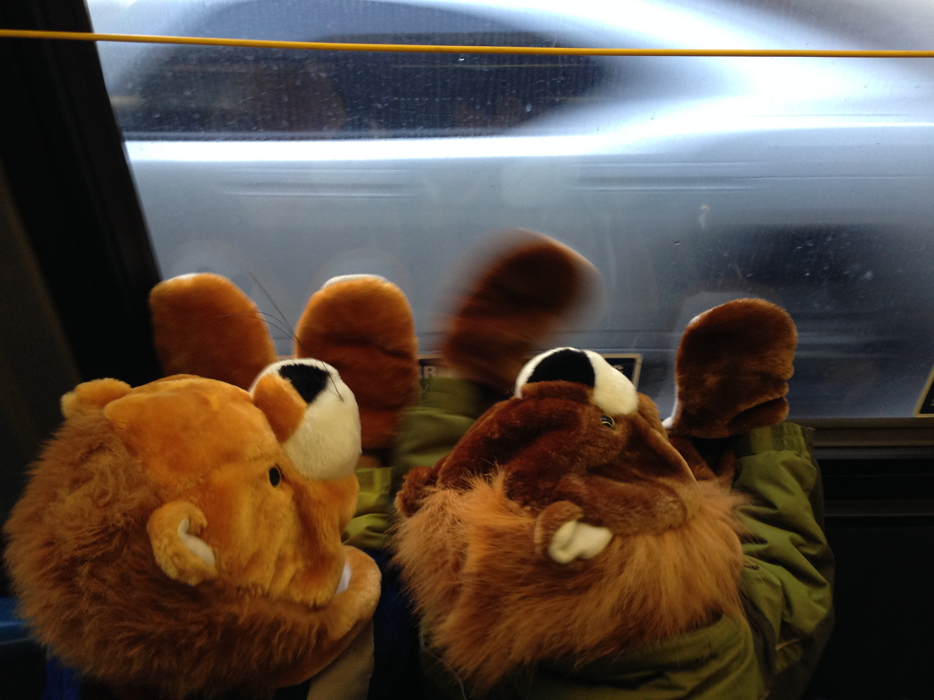subway lions
