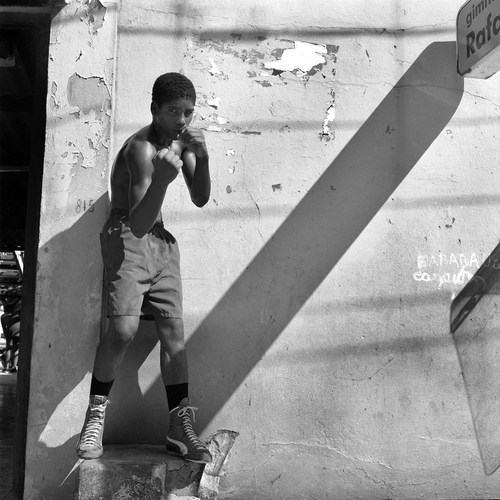boxingss