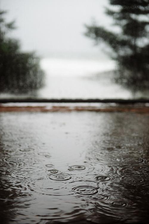rainssz