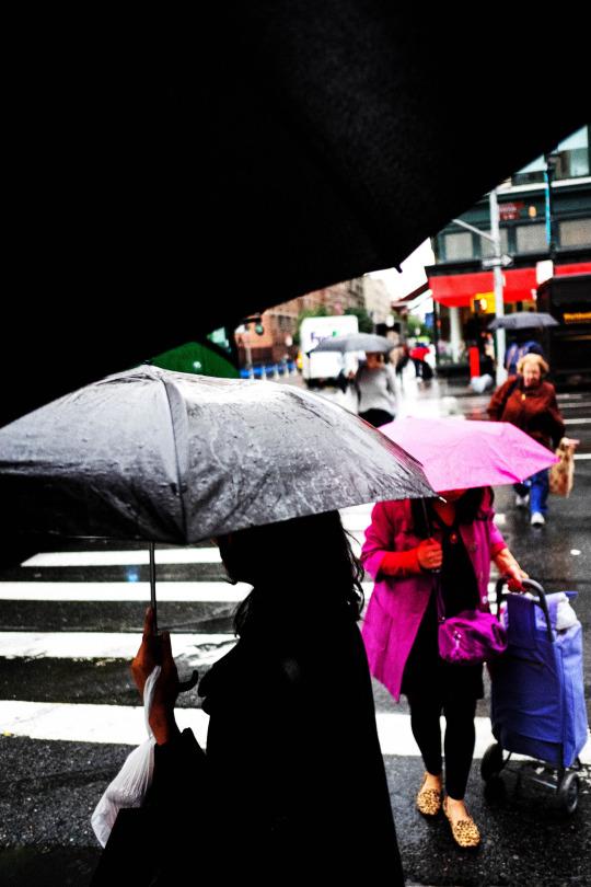 rainbagsbags