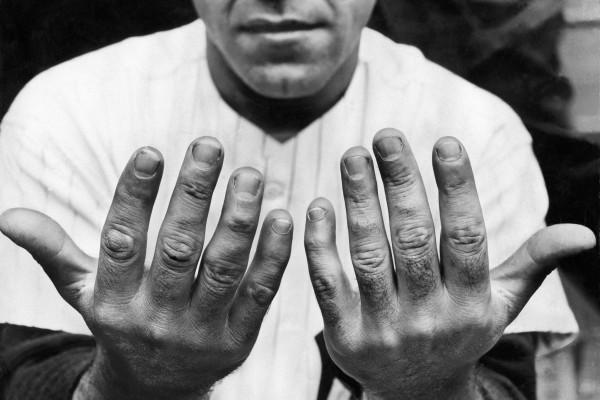yogi's hands