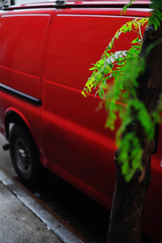 red truck green branch bags