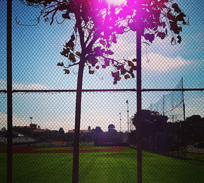 Baseball Field in LA