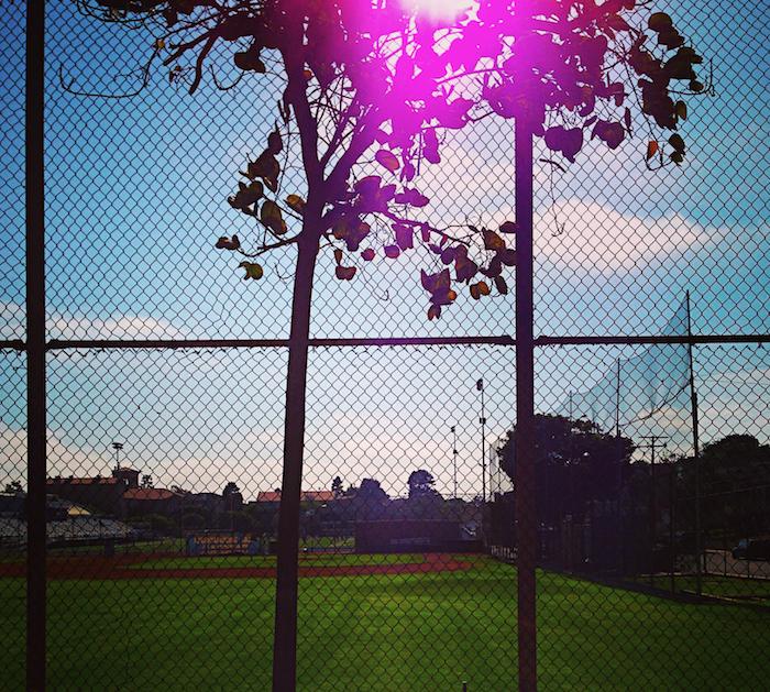 Baseball Field in LA