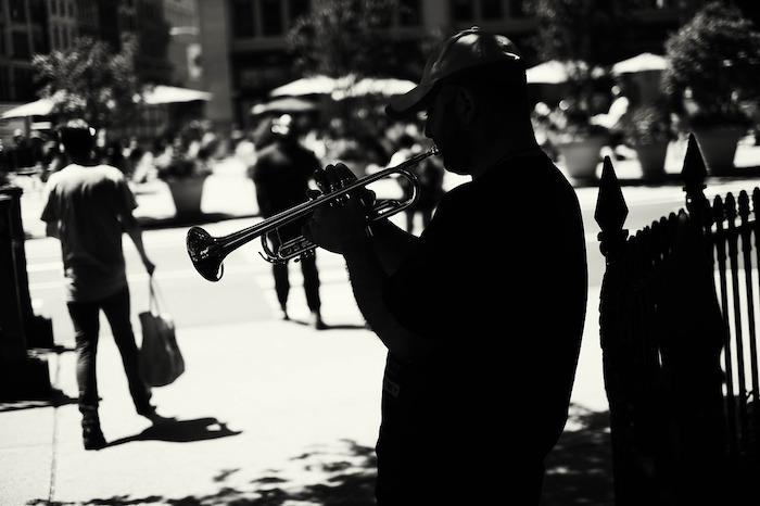 bags trumpet bags